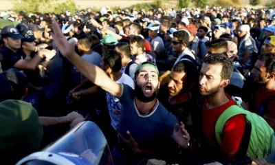 мигранти0000277100-article2