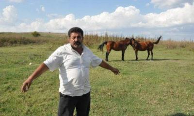 кипърец1557742583-640-309646